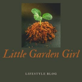 little garden girl