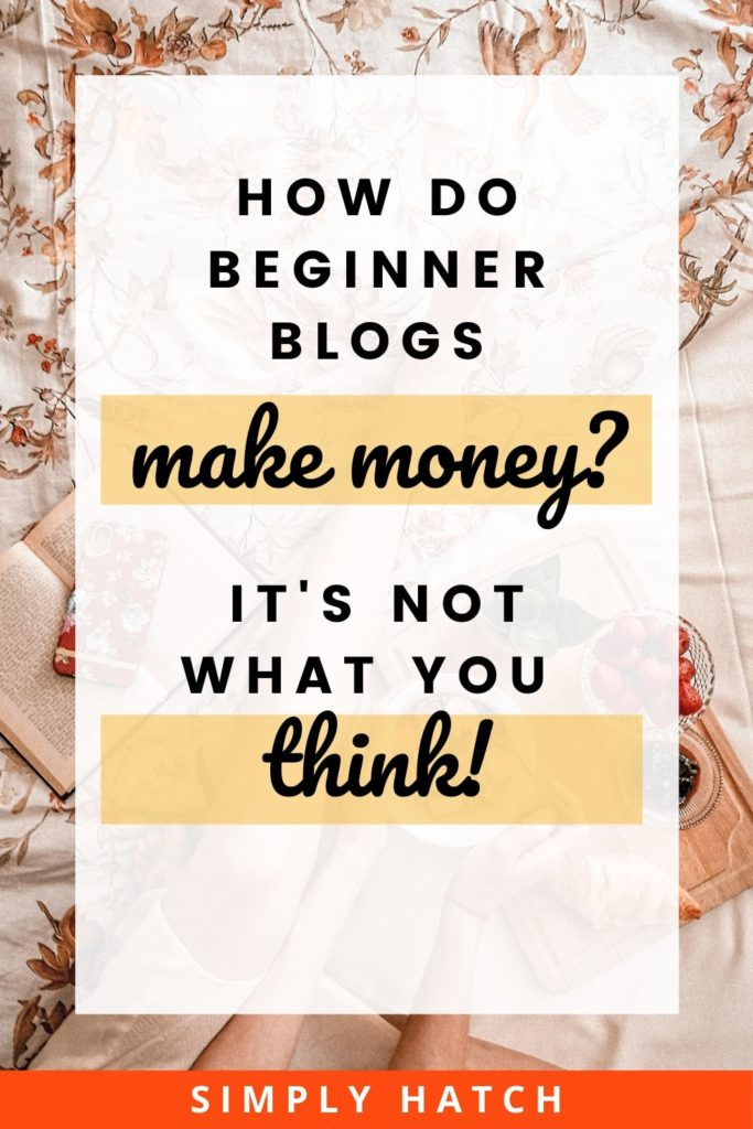How do beginner blogs make money