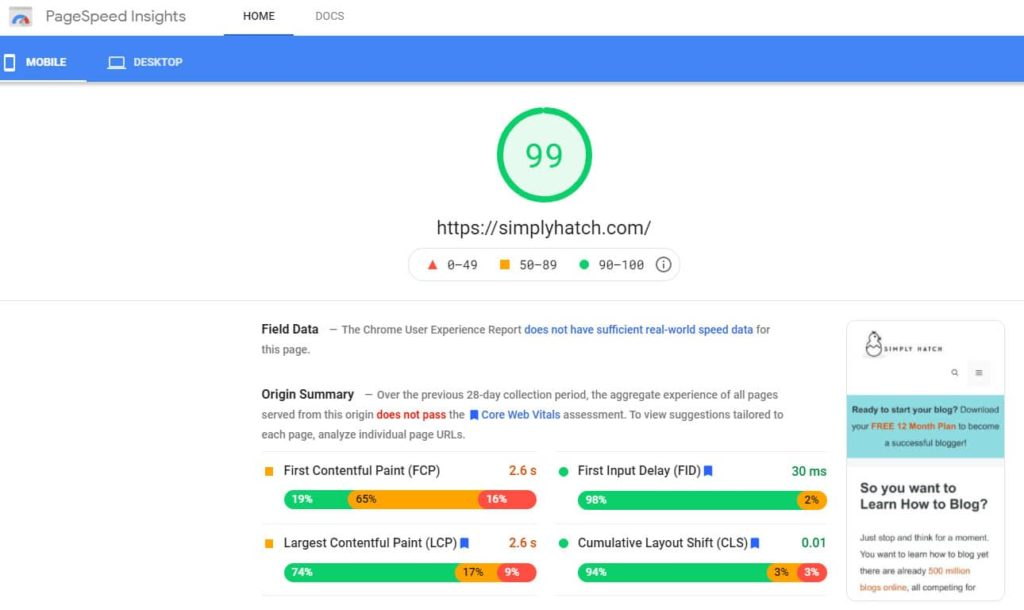 PageSpeed Perfomance on Google